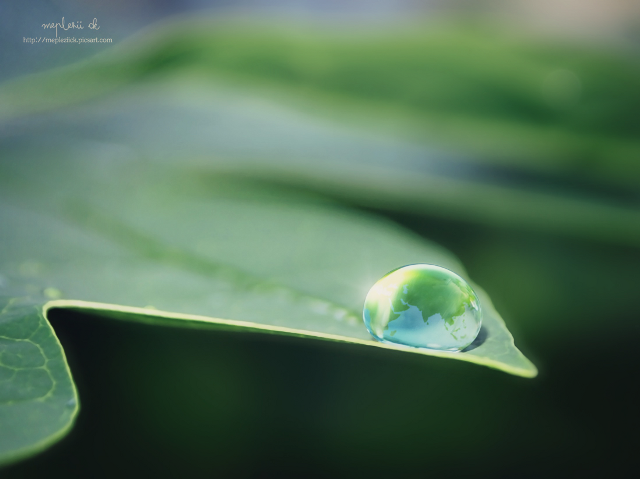 pictures of raindrops