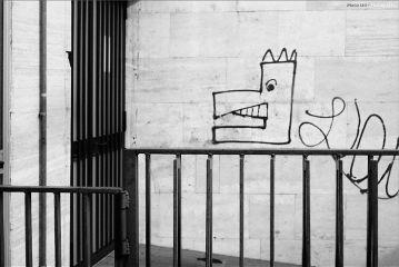 photography streetphoto streetart
