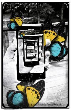 wappictureinpicture picsartinhand clipart butterflies hdr