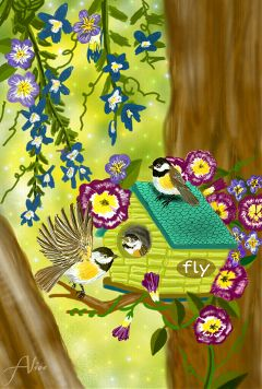 dcbirdhouse drawing colorful birds spring