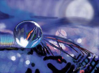 draw digitalart art drawing nature
