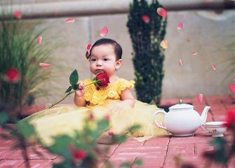 rose flower baby fantasy bokeh