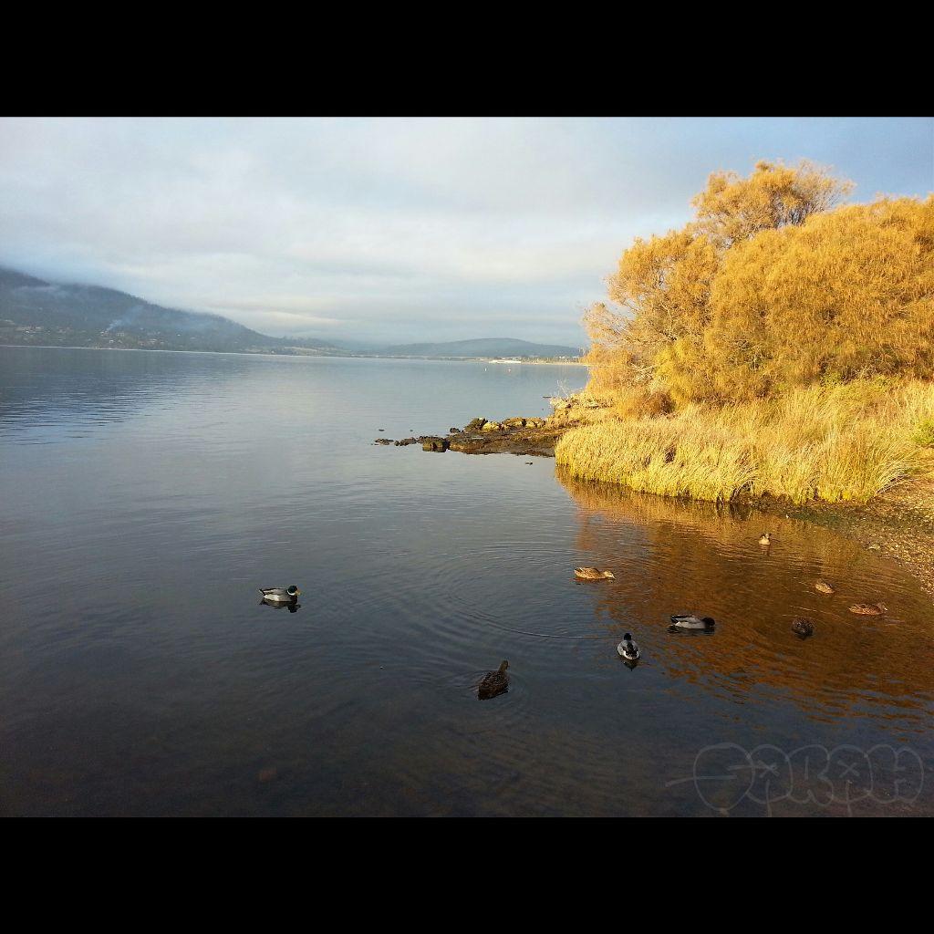 Lake in Hobart,  Tasmania   #tasmania  #hobart