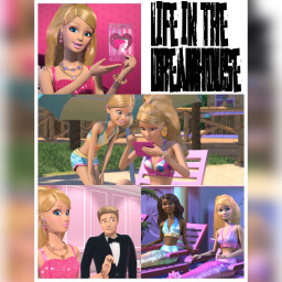 lifeinthedreamhouse barbie squarefit