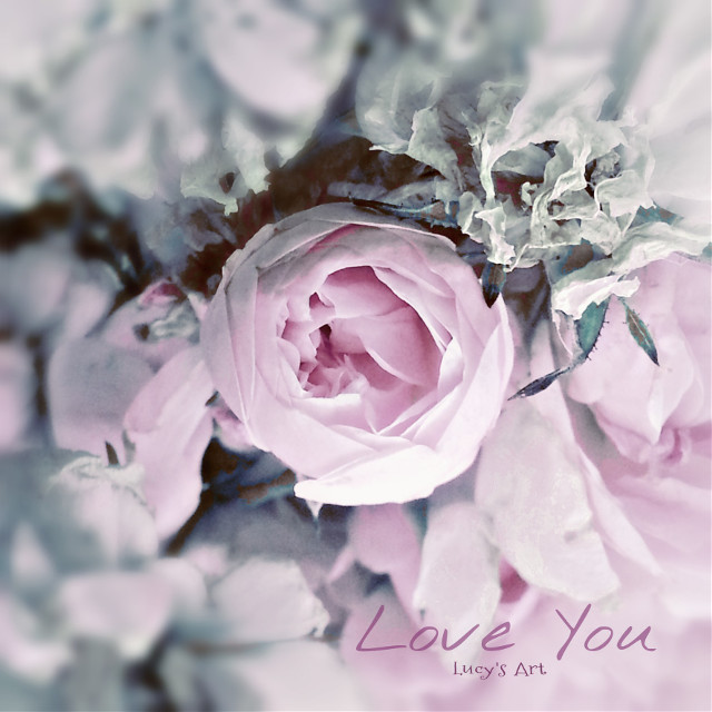 Love....only love. #roses #love