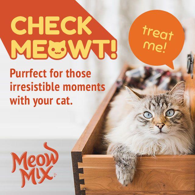 meowt clipart