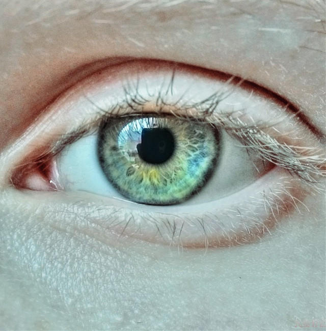 #popart #colorful #nature #people #hdr #retro #cute #eyes #eye #photography