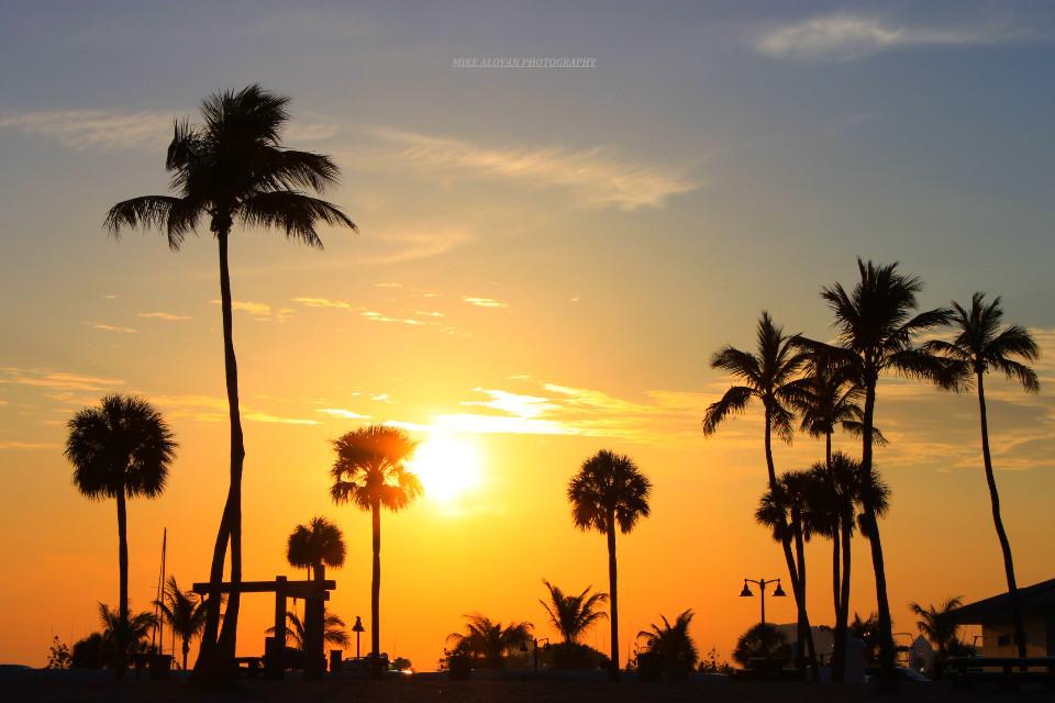 Sunset. .by Mike Aloyan