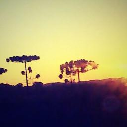 sunset summer nature emotions photography