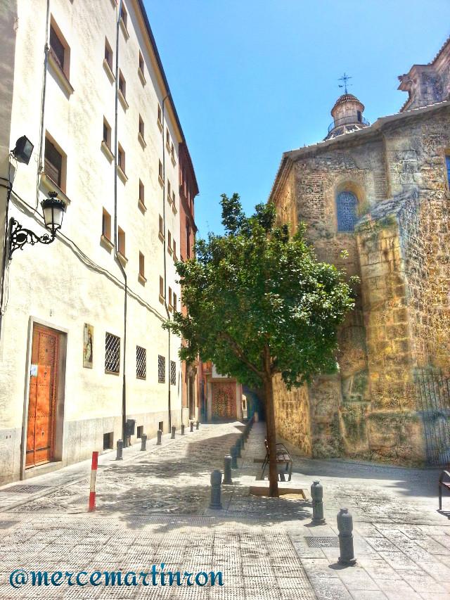 Granada* (Santa Cruz la Real Convent- Santo Domingo Church)