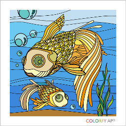 colorfy colorongbook hobby relaxing fish