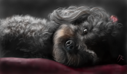 dog petsandanimals drawing digitaldrawing digitalpainting