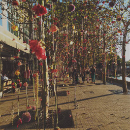 nyc hangingflowers walkway